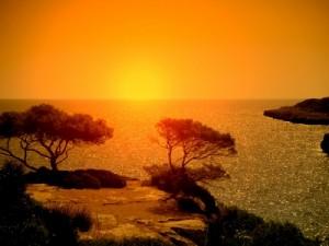 Strand / Badebucht auf Mallorca